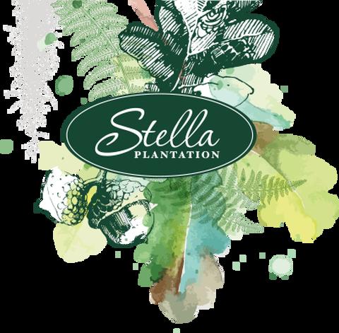 Stella Plantation logo